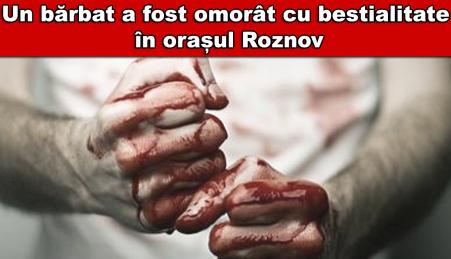 roznov1
