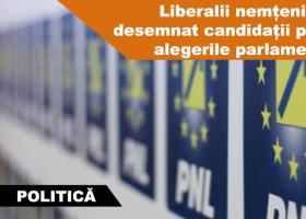 Liberalii nemțeni și-au desemnat candidații pentru alegerile parlamentare