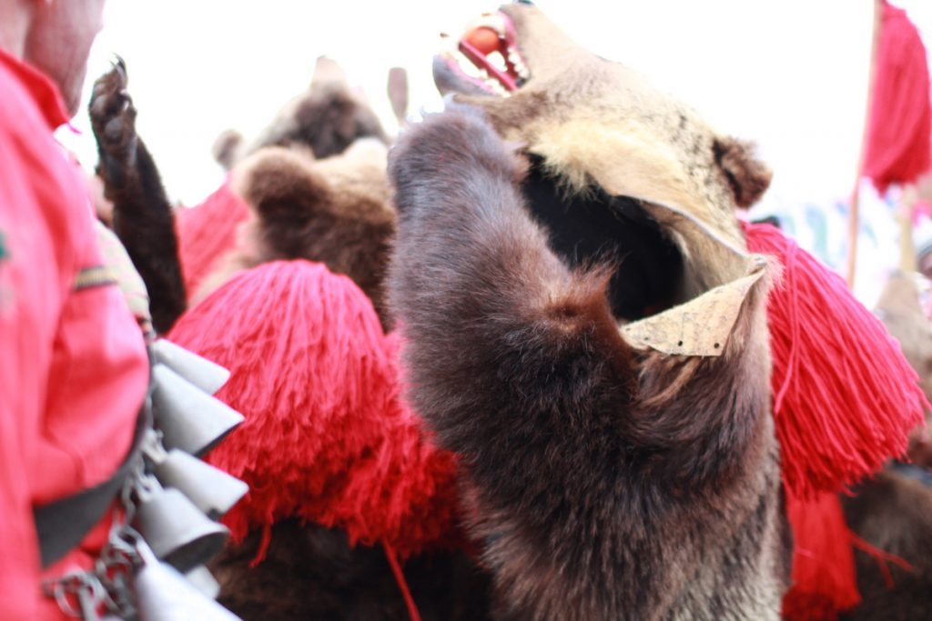festivalul-de-datini-obiceiuri-si-traditii-de-iarna-borlesti-2016-18