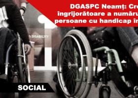 Aproape 20.000 de nemțeni au încadrare în grad de handicap