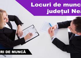 LOCURI DE MUNCĂ ÎN JUDEȚUL NEAMȚ LA 20.01.2017