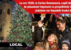 La ora 16:00, la Curtea Domnească, copiii din centrele de plasament împreună cu președintele Consiliului Județean vor împodobi bradul de Crăciun